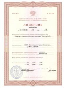 Лицензия старая 1