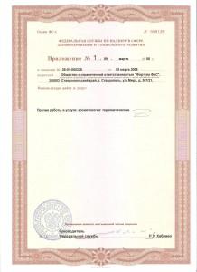 Лицензия старая 2